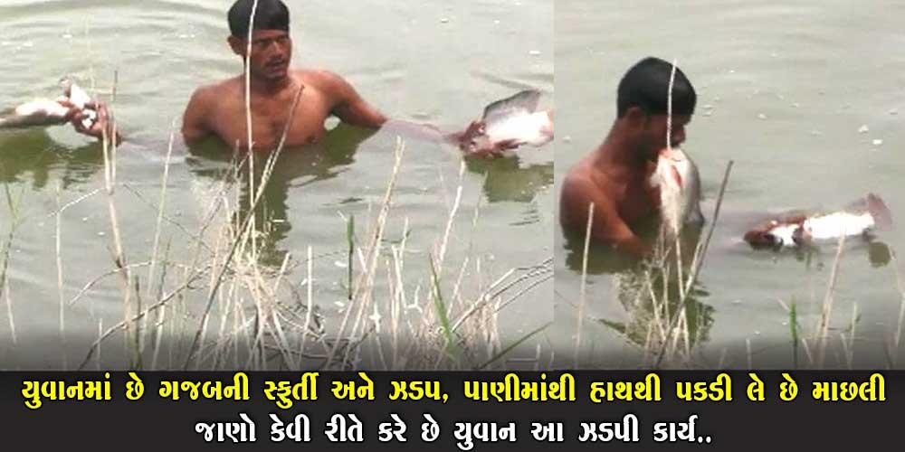 પાણીમાંથી હાથ વડે પકડી લે છે માછલી…   જાણો કેવી રીતે કરે છે આ ઝડપી કાર્ય.