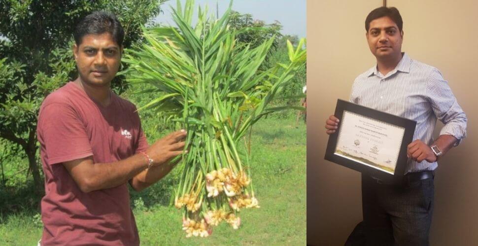 ગુજરાતના યુવાને લાખોની નોકરી છોડીને કરી હળદરની ખેતી, એક વર્ષનું ટર્નઓવર છે આટલા કરોડ.