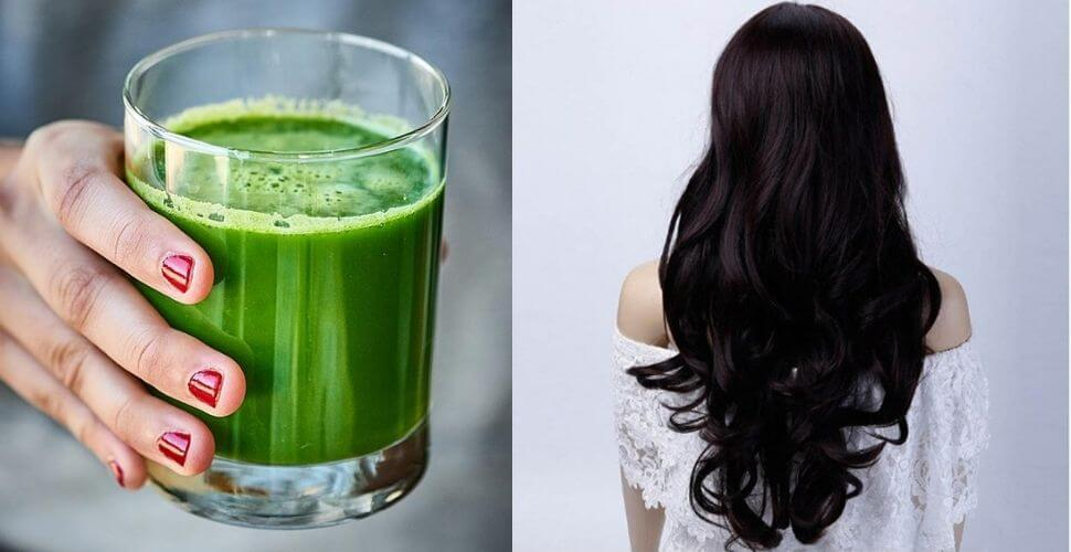 આ બે વસ્તુનો રસ મિક્સ કરી ને અઠવાડિયામાં 2 વાર લગાવી લો.. તમારા વાળને આપશે અદ્દભુત સુંદરતા