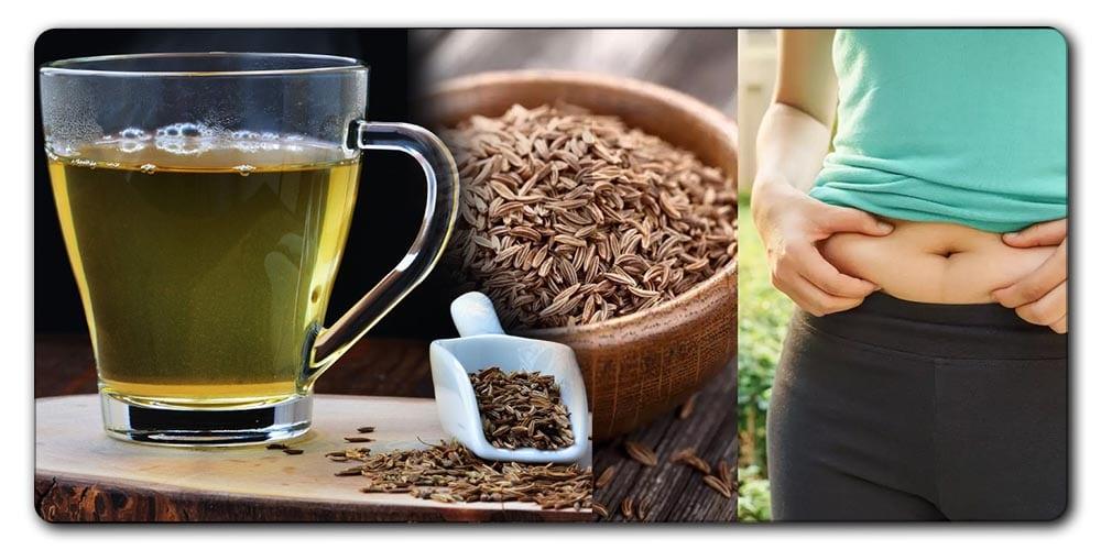આ ઔષધીનું દરરોજ 3 થી 4 વાર સેવન ફટાફટ ઉતારશે તમારું વજન.. જાણો ઉપયોગ કરવાની રીત